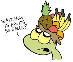 hat21_fruit